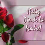 ¡Feliz Día de la Madre! Es hermoso que un hijo reconozca...