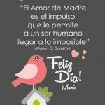 El Amor de Madre es el impulso que le permite a un ser humano...