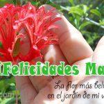 ¡Felicidades Madre! La flor más bella en el jardín de mi vida.