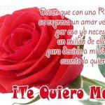 Dicen que con una Rosa roja se expresa un amor verdadero, ...