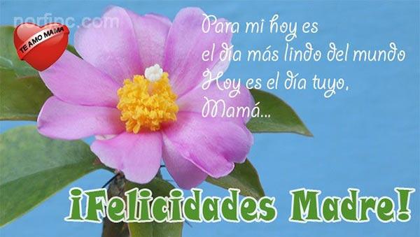 ¡Felicidades Madre! Para mi hoy es el día más lindo del mundo...
