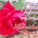 7 Letras, 2 Palabras, 1 Perfección: Mi Madre ¡Felicidades Mamá!