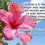 Gracias y Felicidades en el Día de la Madre.