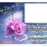 Feliz Día de la Madre. Madre es el nombre del ángel que Dios...
