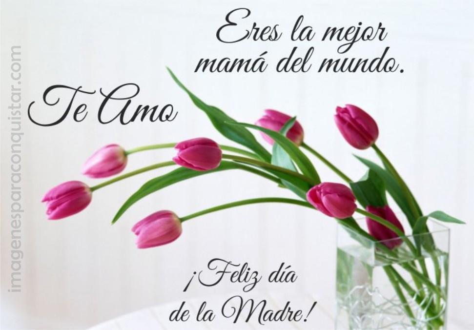 Eres la mejor mamá del Mundo. Te Amo ¡Feliz día de la Madre!