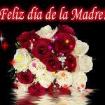 ¡¡Feliz Día de la Madre!! A las Madres, que brillan aún más que...