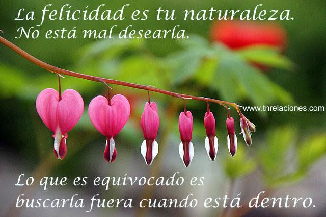 La felicidad es tu naturaleza, no está mal desearla. Lo que es equivocado es buscarla fuera cuando está dentro