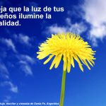 Deja que la luz de tus sueños ilumine la realidad