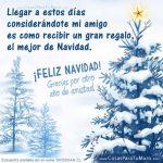 ¡Feliz Navidad! Gracias por otro Año de Amistad