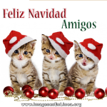 Feliz Navidad Amigos