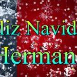 Feliz Navidad Hermano