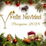 Que en estas fiestas la magia sea tu mejor traje, tu sonrisa el mejor regalo, tus ojos el mejor destino y tu felicidad mi mejor deseo. Feliz Navidad y Próspero Año 2018.
