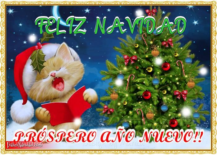 Cuando la Navidad nos convoca, nadie queda excluido, desde el más pequeño al mayor se funden en un gran abrazo! Feliz Navidad y Próspero Año Nuevo
