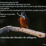 V. La función del obrador de milagros