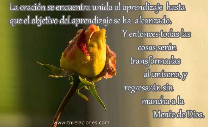 La oración se encuentra unida al aprendizaje hasta que el objetivo del aprendizaje se ha alcanzado. Y entonces todas las cosas serán transformadas al unísono, y regresarán sin mancha a la Mente de Dios.