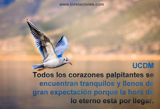 Todos los corazones palpitantes se encuentran tranquilos y llenos de gran expectación porque la hora de lo eterno está por llegar.