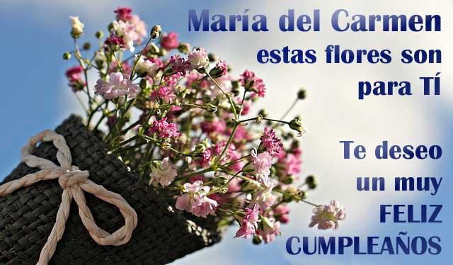 María del CarmenTe deseo un muy FELIZ CUMPLEAÑOS