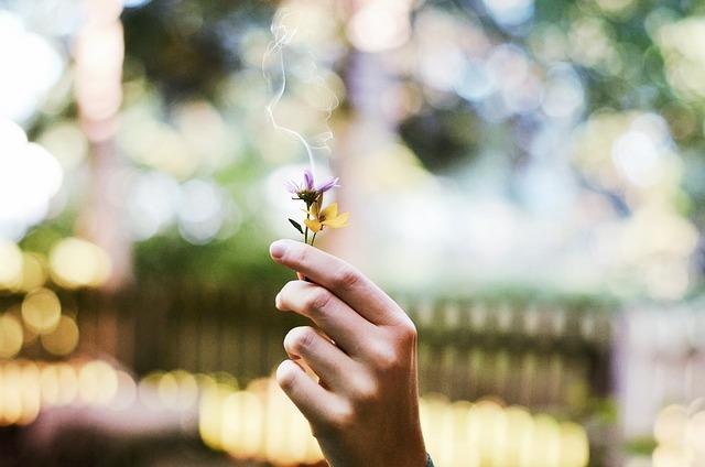 aroma-nostalgia