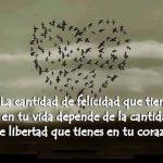 La cantidad de felicidad que tienes en tu vida depende de la cantidad de libertad que tienes en tu corazón