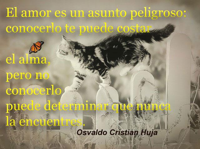 """""""El amor es un asunto peligroso: conocerlo te puede costar el alma, pero no conocerlo puede determinar que nunca la encuentres."""" Osvaldo Cristian Huja"""