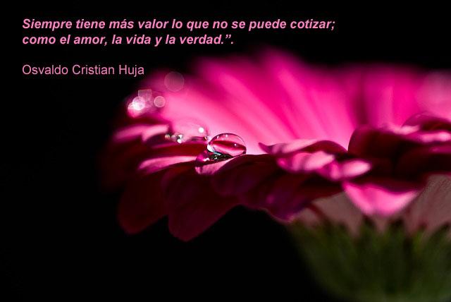 Siempre tiene más valor lo que no se puede cotizar; como el amor, la vida y la verdad. Osvaldo Cristian Huja