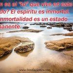 """¿Quién es el """"tú"""" que vive en este mundo? El espíritu es inmortal, y la inmortalidad es un estado permanente."""