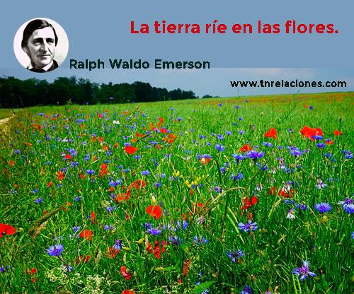 La tierra ríe en las flores