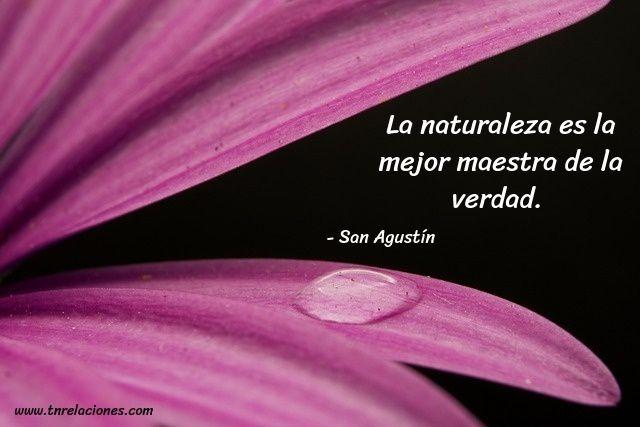 La naturaleza es la mejor maestra... San Agustín