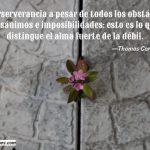 La perseverancia a pesar de todos los obstáculos... Thomas Carlyle