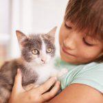 Bebés: Cómo evitar la toxoplasmosis
