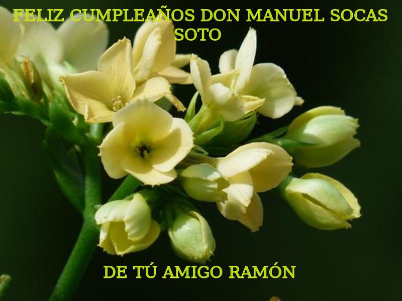 Feliz cumpleaños Don Manuel Socas Soto. De tú amigo Ramón