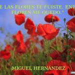 Miguel Henández, frases, citas, imágenes y memes