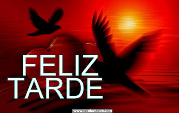 Feliz Tarde Amigos De Gabito Gabitos