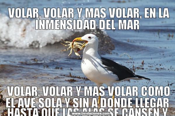 Volar, Volar y mas Volar, en la inmensidad del mar, Volar, Volar y más Volar como el ave sola y sin a donde llegar hasta que las alas se cansen.