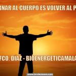 Meme de usuario Bioenergética