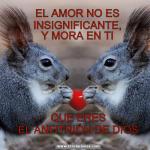 Meme de usuario El Amor no es  insignificante , y mora en ti que eres el anfitrión de Dios
